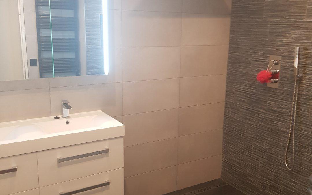 Badkamer en toilet in Amsterdam