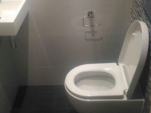 Toilet renovatie muur versiering